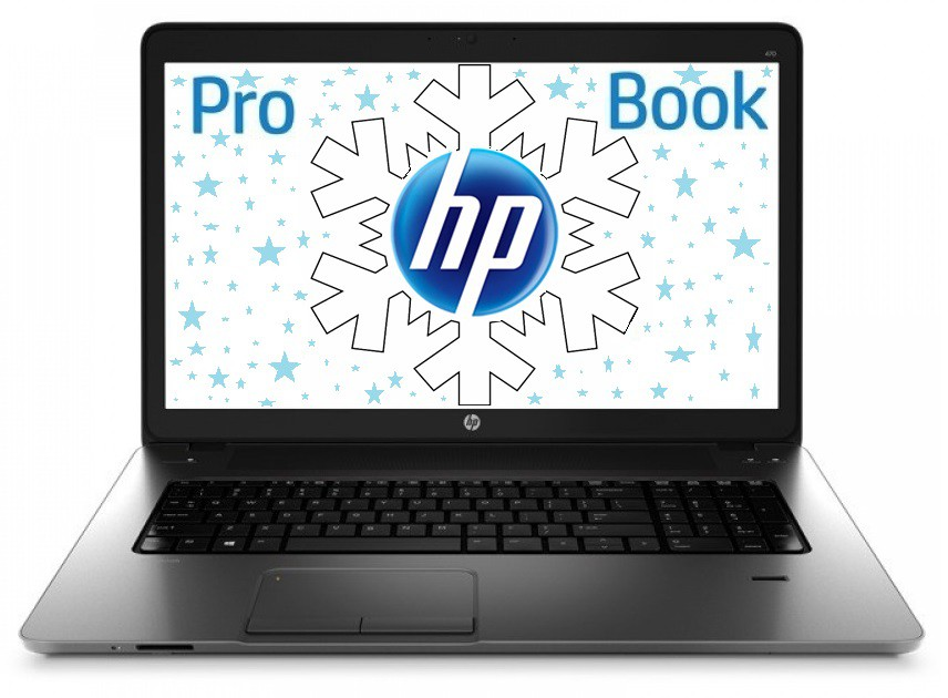 Notebook HP ProBook 455 (F0X70EA#BCM)